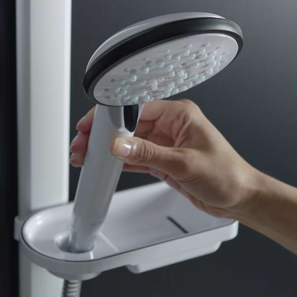 Soap dish that doubles up as a secondary showerhead holder